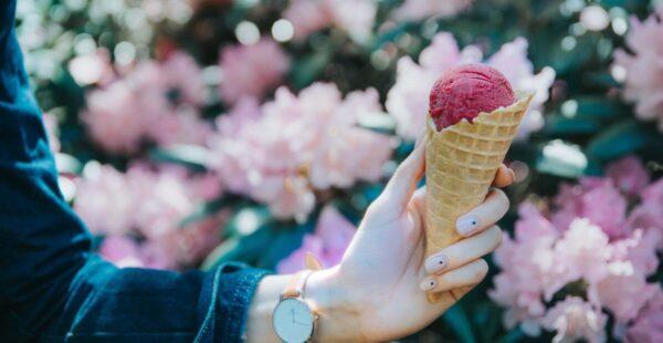 アイスクリームイメージ_3