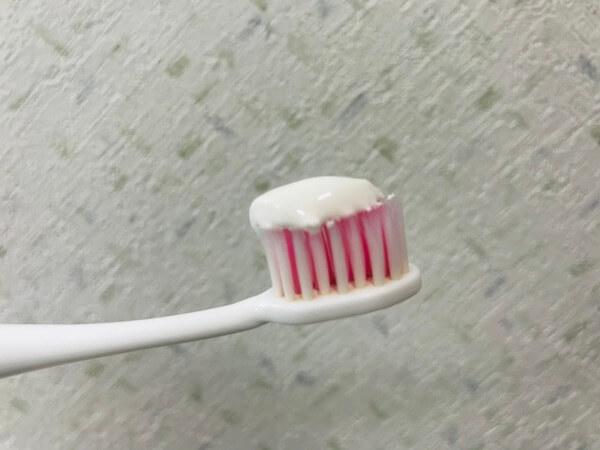 幸修園の歯磨き粉のテクスチャ