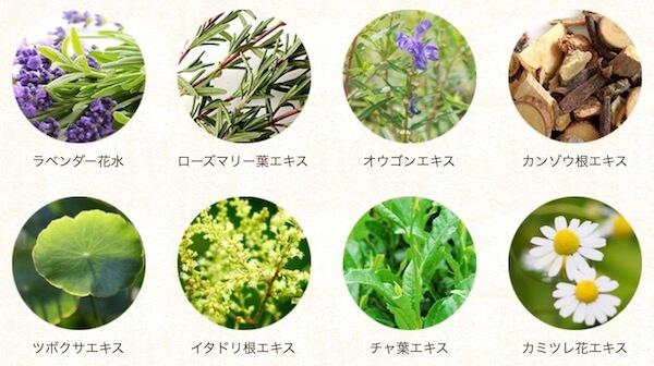 アロベビーミルクローションの植物エキス