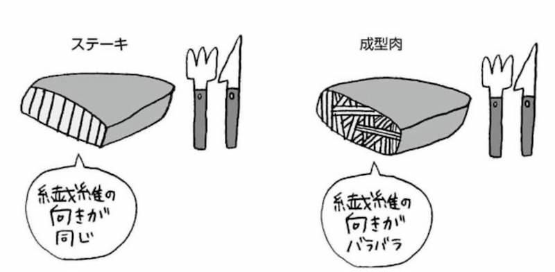 成型肉の見分け方