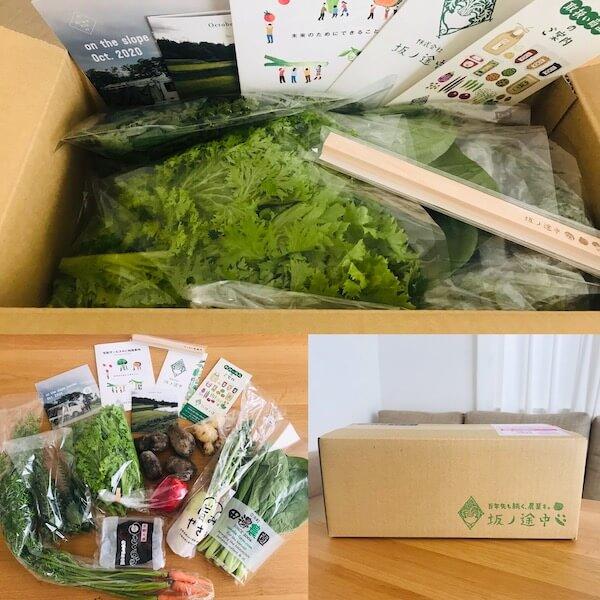 坂ノ途中のオーガニック野菜