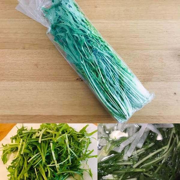 無農薬野菜ミレーの京水菜