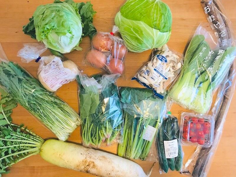 無農薬野菜のミレー 届いた野菜全部